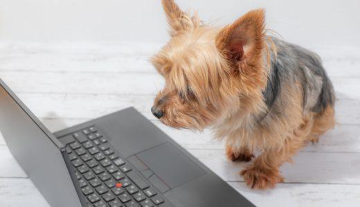初心者でもブログで稼ぐジャンルを間違えずに選ぶ2つの方法